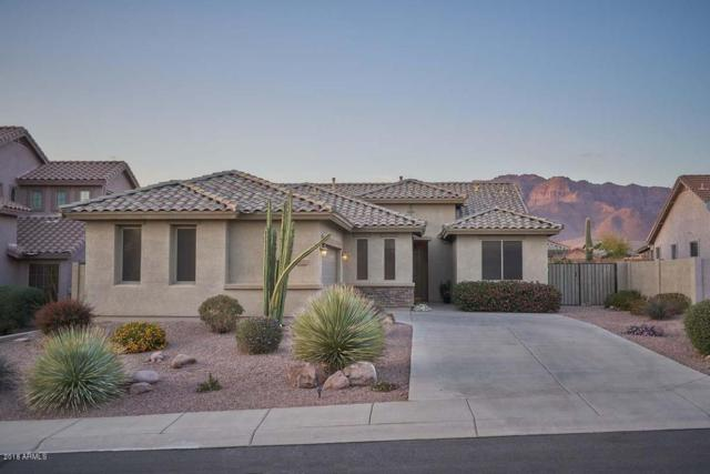7628 E Elderberry Way, Gold Canyon, AZ 85118 (MLS #5743528) :: The Everest Team at My Home Group