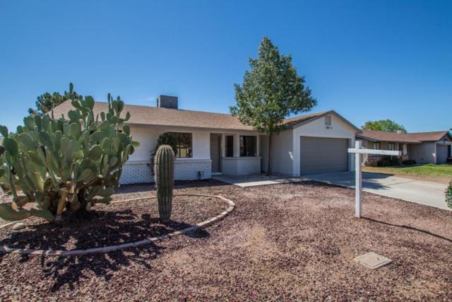 3147 E Dolphin Avenue, Mesa, AZ 85204 (MLS #5743667) :: The Jesse Herfel Real Estate Group