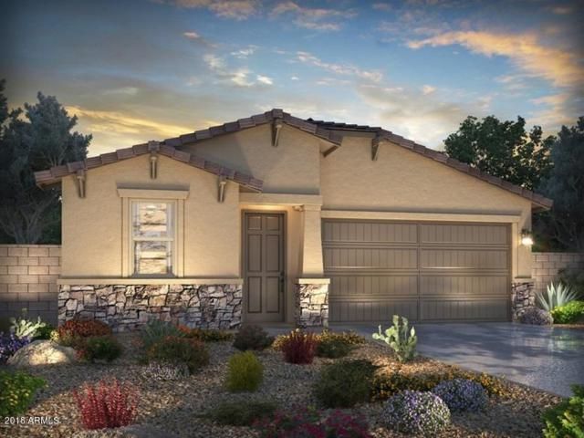 21355 W Granada Road, Buckeye, AZ 85396 (MLS #5743668) :: Occasio Realty
