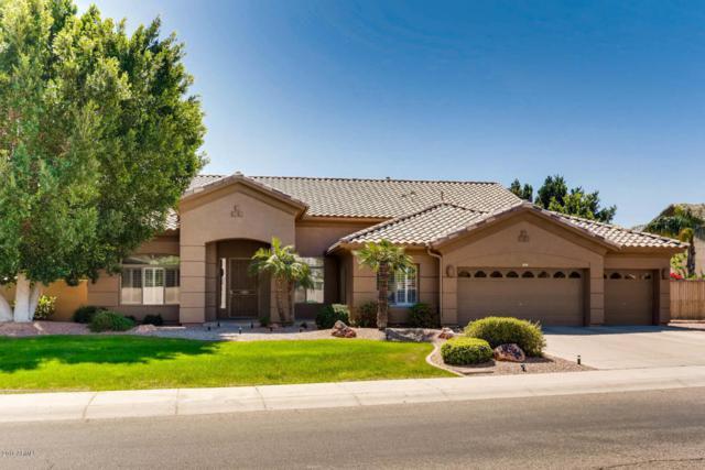 7117 W Villa Chula, Glendale, AZ 85310 (MLS #5743865) :: Occasio Realty