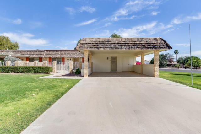10427 W Desert Forest Circle, Sun City, AZ 85351 (MLS #5743922) :: Brett Tanner Home Selling Team