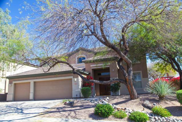 10843 E Butherus Drive, Scottsdale, AZ 85255 (MLS #5744040) :: Occasio Realty