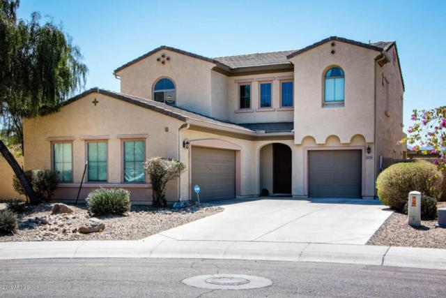 5335 W Beverly Road, Laveen, AZ 85339 (MLS #5744057) :: Occasio Realty