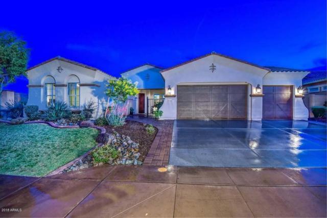 12777 W Via Caballo Blanco, Peoria, AZ 85383 (MLS #5744178) :: The Worth Group