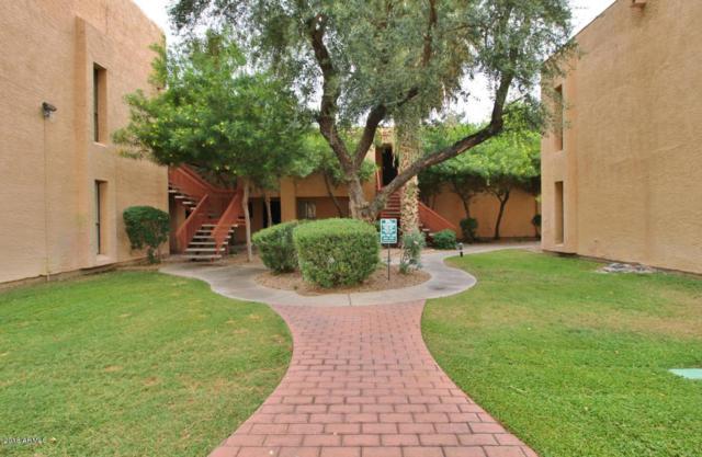3131 W Cochise Drive #219, Phoenix, AZ 85051 (MLS #5744249) :: Brett Tanner Home Selling Team