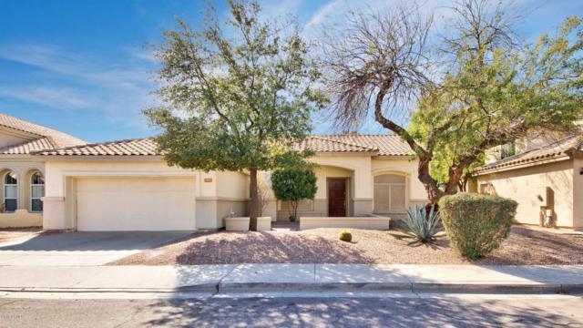 740 N Madrid Lane, Chandler, AZ 85226 (MLS #5744307) :: Kelly Cook Real Estate Group