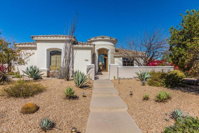 7636 E Calle De Las Brisas Drive, Scottsdale, AZ 85255 (MLS #5744320) :: Occasio Realty