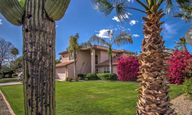 5514 E Paradise Lane, Scottsdale, AZ 85254 (MLS #5744352) :: Lifestyle Partners Team