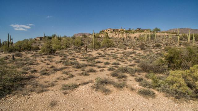 9264 E Superstition Mountain Drive, Gold Canyon, AZ 85118 (MLS #5744466) :: Occasio Realty