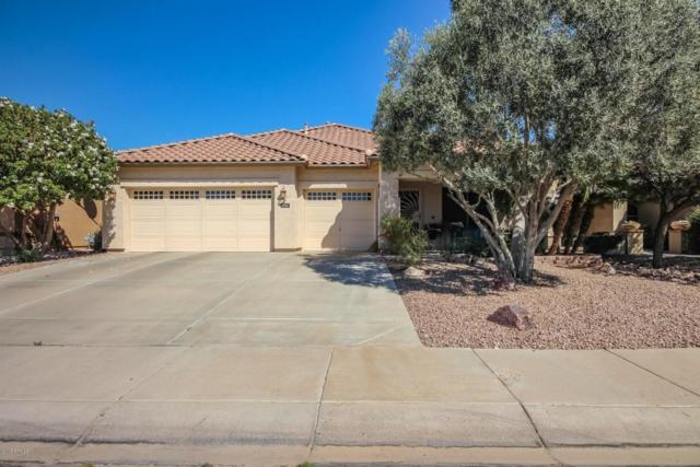 3701 N 127TH Drive, Avondale, AZ 85392 (MLS #5744486) :: Sibbach Team - Realty One Group