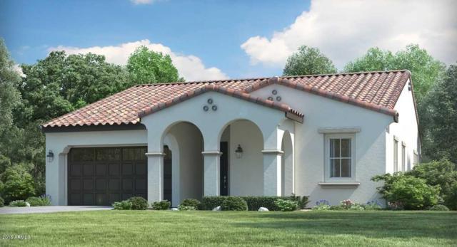 4885 N 207TH Lane, Buckeye, AZ 85396 (MLS #5744495) :: Desert Home Premier