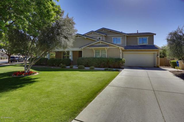 3984 N Park Street, Buckeye, AZ 85396 (MLS #5744561) :: Occasio Realty
