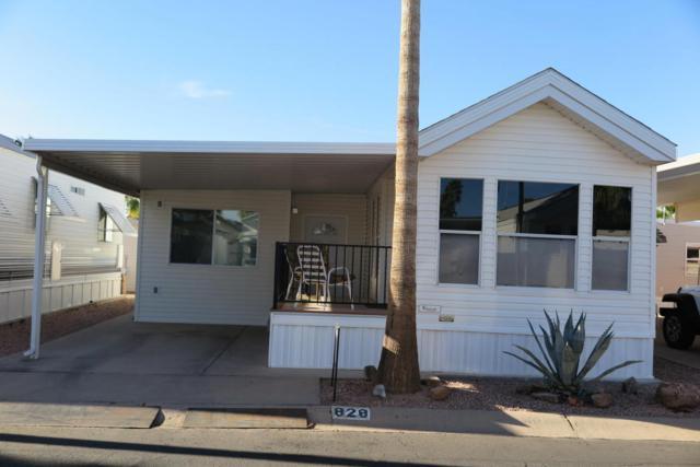 3710 S Goldfield Road #828, Apache Junction, AZ 85119 (MLS #5744649) :: Brett Tanner Home Selling Team