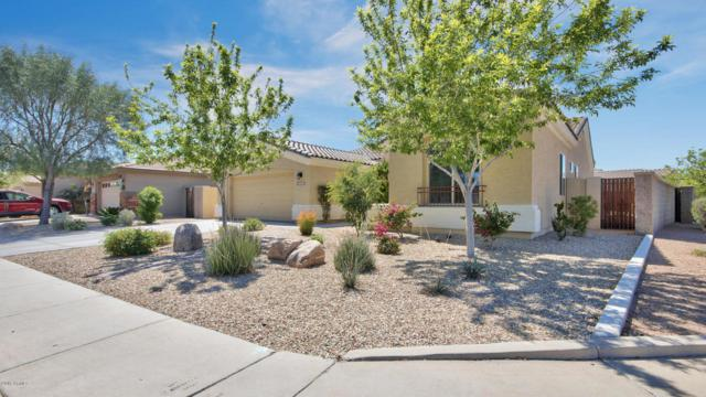 16528 N 181ST Drive, Surprise, AZ 85388 (MLS #5744661) :: Kortright Group - West USA Realty
