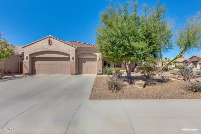 5022 W Parsons Road, Phoenix, AZ 85083 (MLS #5744665) :: REMAX Professionals