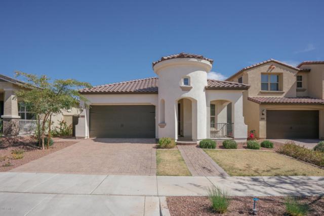 20554 W Nelson Place, Buckeye, AZ 85396 (MLS #5744802) :: Occasio Realty