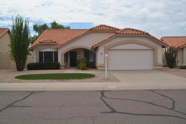 4349 E Gold Poppy Way, Phoenix, AZ 85044 (MLS #5744839) :: Occasio Realty