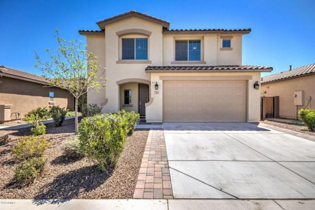 963 W Empress Tree Avenue, San Tan Valley, AZ 85143 (MLS #5745078) :: Santizo Realty Group