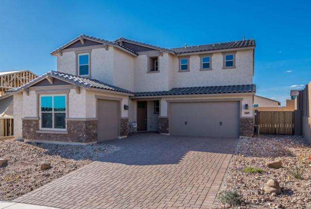2930 W Tumbleweed Drive, Phoenix, AZ 85085 (MLS #5745131) :: Occasio Realty
