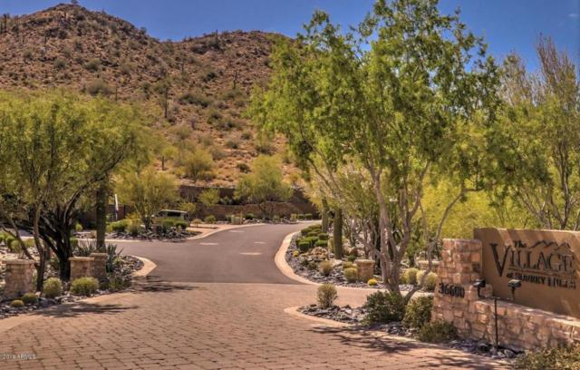 36600 N Cave Creek Road B12, Cave Creek, AZ 85331 (MLS #5745145) :: Arizona 1 Real Estate Team