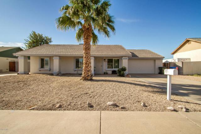 3729 W Danbury Drive, Glendale, AZ 85308 (MLS #5745185) :: Sibbach Team - Realty One Group