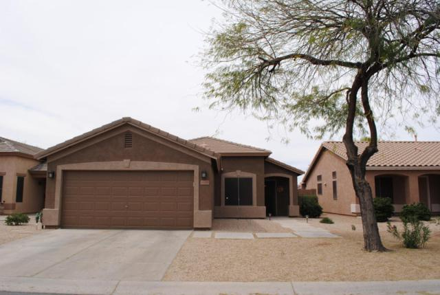 30430 N Sunray Drive, San Tan Valley, AZ 85143 (MLS #5745186) :: Kortright Group - West USA Realty