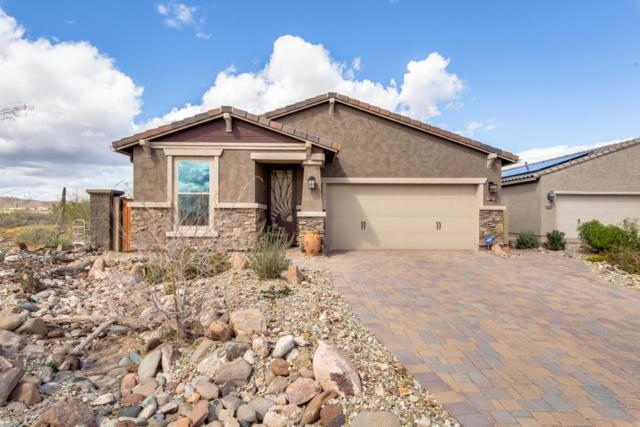 3046 W Woburn Lane, Phoenix, AZ 85085 (MLS #5745251) :: Occasio Realty