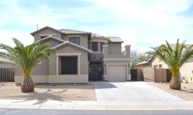43381 W Rio Bravo Drive, Maricopa, AZ 85138 (MLS #5745265) :: Occasio Realty