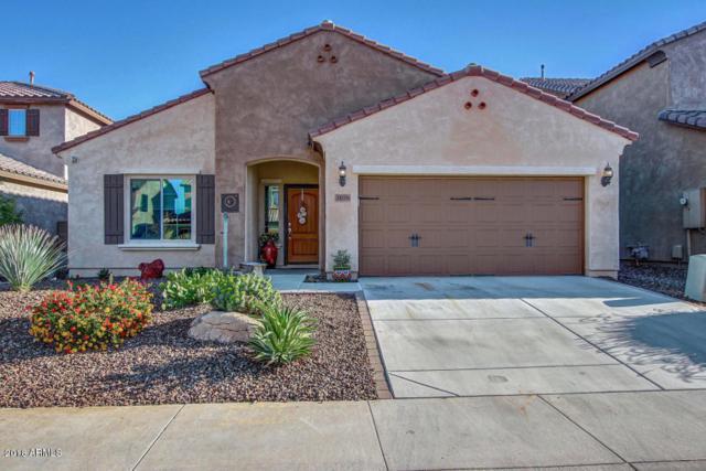 1656 W Cavedale Drive, Phoenix, AZ 85085 (MLS #5745299) :: Occasio Realty