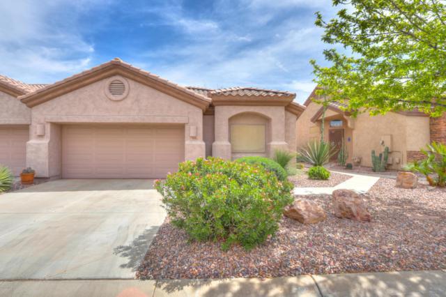 1446 N Desert Willow Street, Casa Grande, AZ 85122 (MLS #5745325) :: Yost Realty Group at RE/MAX Casa Grande