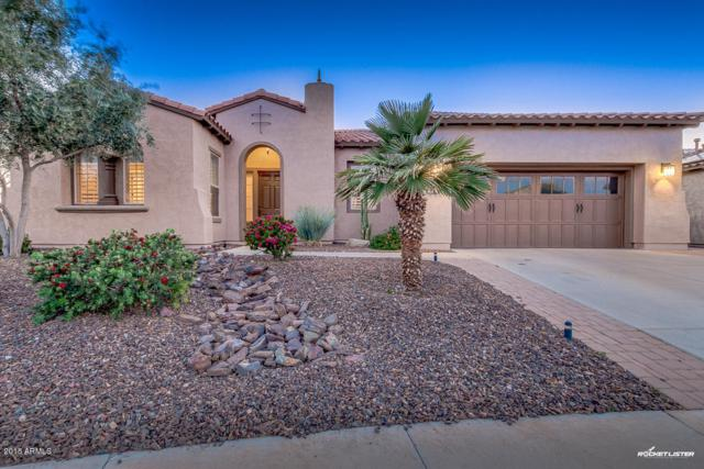 29254 N 130TH Glen, Peoria, AZ 85383 (MLS #5745385) :: Essential Properties, Inc.
