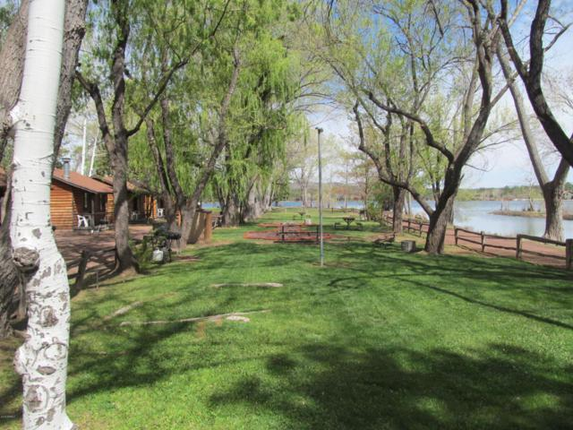 1075 Larson Road, Lakeside, AZ 85929 (MLS #5745408) :: The Daniel Montez Real Estate Group