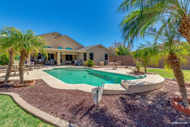 22020 N Reis Drive, Maricopa, AZ 85138 (MLS #5745416) :: Occasio Realty