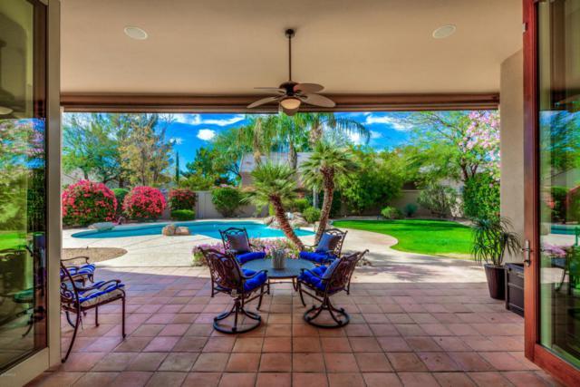 11393 E Sorrel Lane, Scottsdale, AZ 85259 (MLS #5745464) :: Occasio Realty