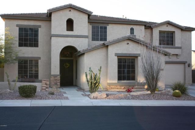 6110 W Fetlock Trail, Phoenix, AZ 85083 (MLS #5745495) :: My Home Group