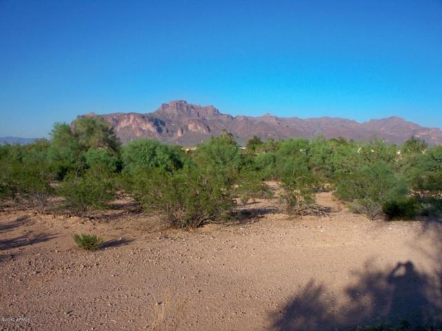 2100 E Old West Highway, Apache Junction, AZ 85119 (MLS #5745496) :: Brett Tanner Home Selling Team