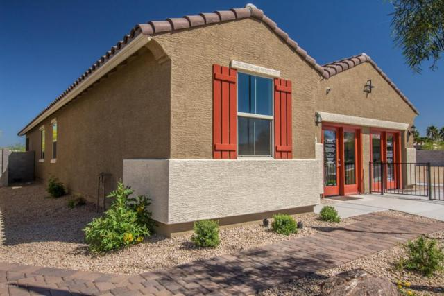 11416 W Foxfire Drive, Surprise, AZ 85378 (MLS #5745569) :: Occasio Realty