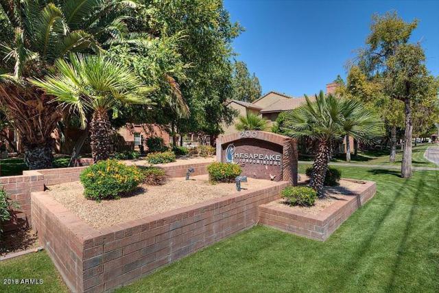 200 E Southern Avenue #244, Tempe, AZ 85282 (MLS #5745588) :: Brett Tanner Home Selling Team