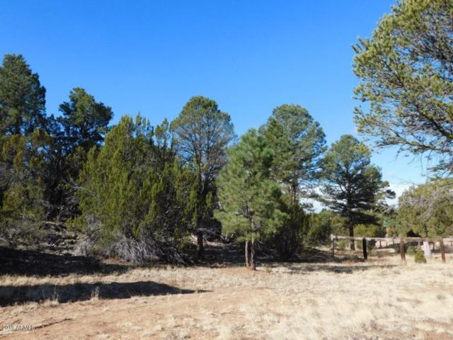 3231 Alkire Road, Overgaard, AZ 85933 (MLS #5745598) :: The Garcia Group @ My Home Group