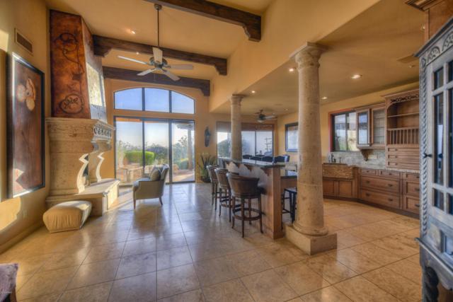 13563 E Summit Drive, Scottsdale, AZ 85259 (MLS #5745641) :: Essential Properties, Inc.