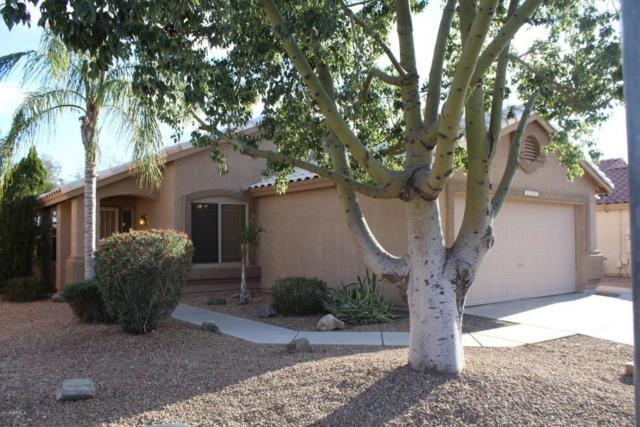 10947 E Delta Avenue, Mesa, AZ 85208 (MLS #5745643) :: Sibbach Team - Realty One Group