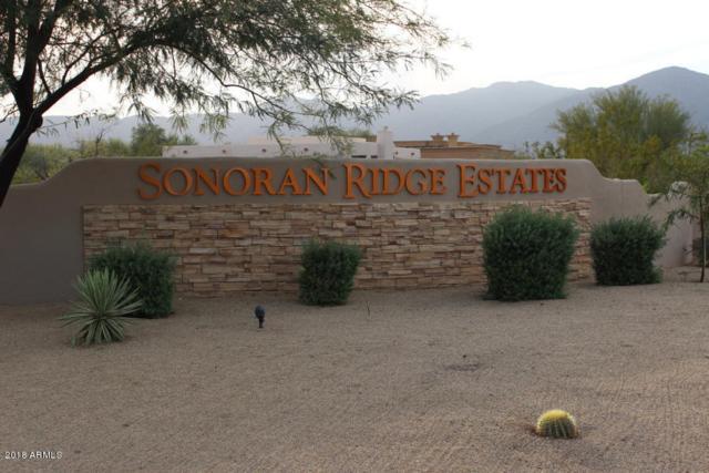 8531 N 192ND Avenue, Waddell, AZ 85355 (MLS #5745779) :: Brett Tanner Home Selling Team
