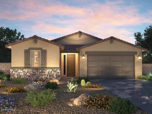 39955 W Brandt Drive, Maricopa, AZ 85138 (MLS #5745851) :: The Everest Team at My Home Group