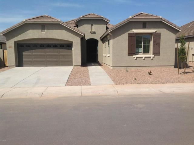 3116 E Presidio Street, Mesa, AZ 85213 (MLS #5745890) :: Keller Williams Realty Phoenix