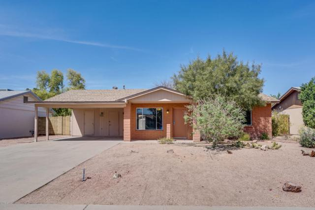 712 E Cornell Drive, Tempe, AZ 85283 (MLS #5745955) :: Kortright Group - West USA Realty