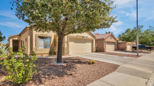 14305 N 129TH Drive, El Mirage, AZ 85335 (MLS #5745974) :: Occasio Realty