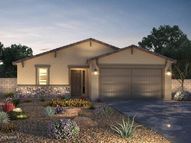 39977 W Brandt Drive, Maricopa, AZ 85138 (MLS #5745991) :: Sibbach Team - Realty One Group