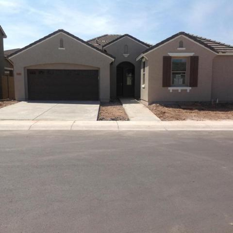 3226 N 31st Street, Mesa, AZ 85213 (MLS #5746019) :: Keller Williams Realty Phoenix