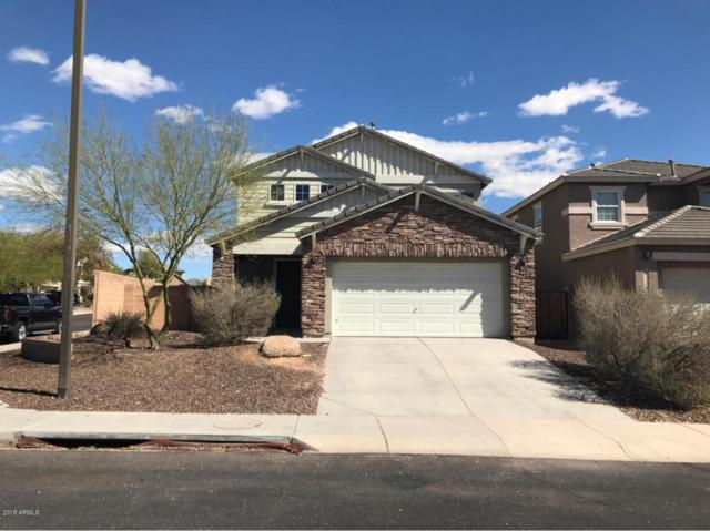3773 N 292ND Lane, Buckeye, AZ 85396 (MLS #5746054) :: Santizo Realty Group