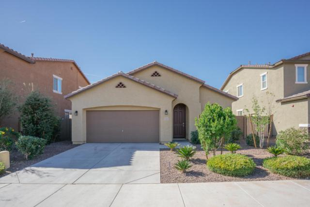 21165 W Coronado Road, Buckeye, AZ 85396 (MLS #5746074) :: Occasio Realty